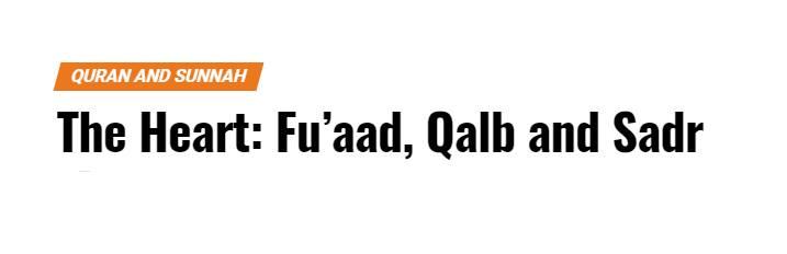 the heart, fuaad, qalb